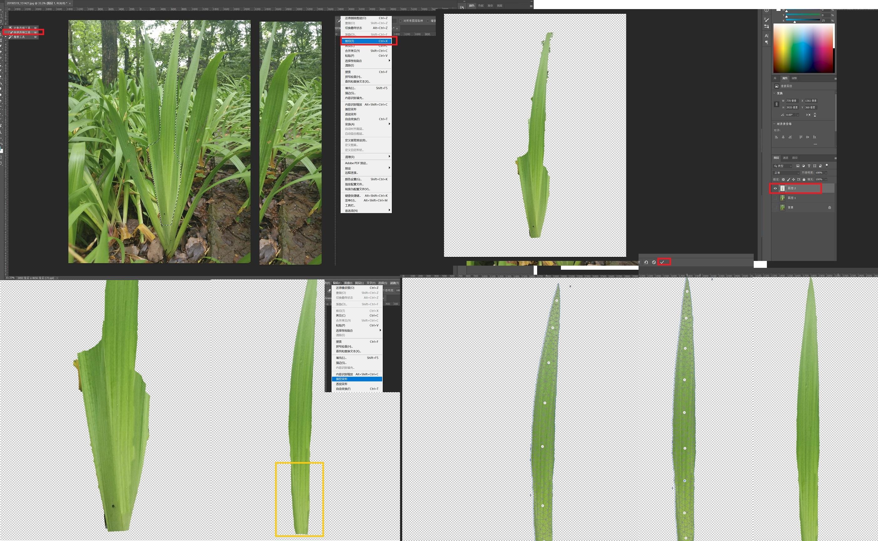 Grass_proccess